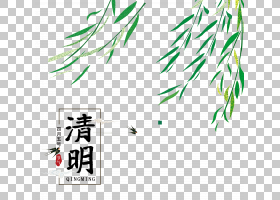 清明艺术字和柳树叶