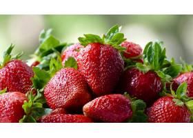 食物,草莓,水果,浆果,巨,特写镜头,壁纸