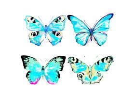 水彩画蓝色蝴蝶