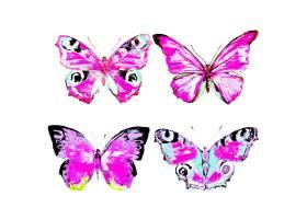 水彩画彩色漂亮蝴蝶