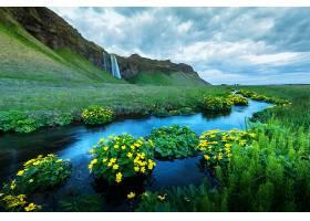 瀑布与河道花草美景