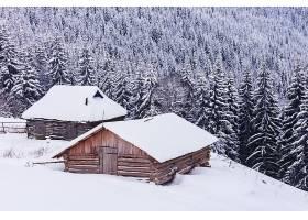 树林山坡上的木屋雪景