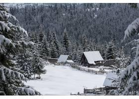森林小镇雪景