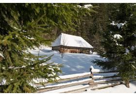 森林中小屋雪景