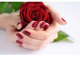双手捧着玫瑰花