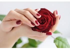 双手捧着的玫瑰花