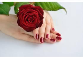 女性手背上的玫瑰花