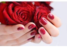手捧着的玫瑰