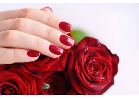 漂亮的玫瑰花与手