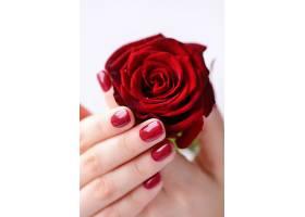 玫瑰花与手特写