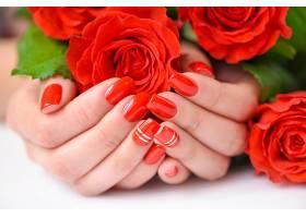 美女双手与玫瑰花