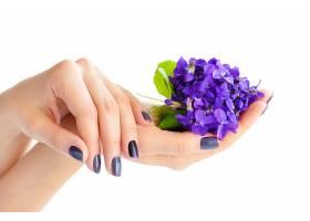 手心里的紫色花朵