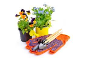手套工具与花卉盆栽
