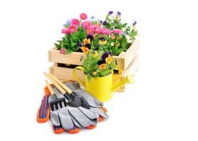 木箱的组合花卉