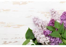 白色木板与花卉绿叶