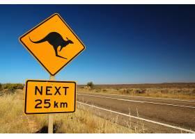 公路与注意野生动物警告牌