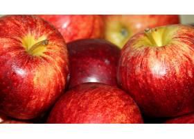 食物,苹果,水果,壁纸(85)