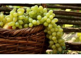 食物,葡萄,水果,壁纸(31)