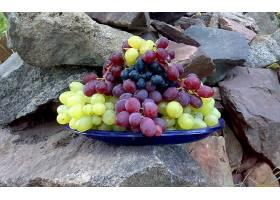 食物,葡萄,水果,壁纸(37)