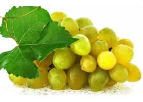 食物,葡萄,水果,壁纸(41)