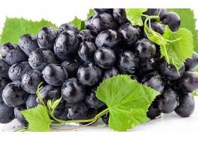 食物,葡萄,水果,壁纸(42)