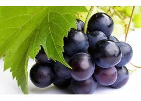 食物,葡萄,水果,壁纸(7)