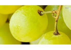 食物,葡萄,水果,壁纸(72)