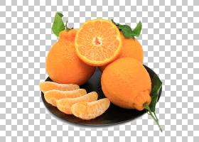 新鲜水果PNG免抠素材 (186)
