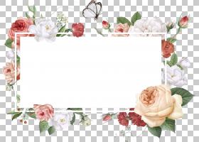 花瓣PNG免抠素材 (85)图片