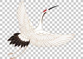 中国风国潮鹤鸟PNG免抠背景