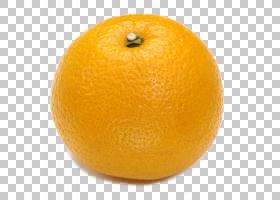 新鲜水果PNG免抠素材 (97)
