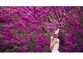 人,户外的女人,黑发,花卉,紫色的花朵,性质,树木,白色礼服,美女,