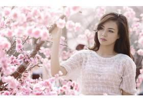 人,美女,日本,亚洲,毛线衣,日本女性,花卉,模特,望着远处,科21631
