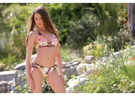 人,美女,比基尼泳装,性质,夏季,埃里卡Ellyson,户外的女人,看着观