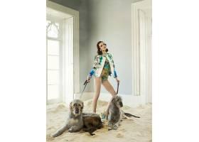 人,时尚,美女,狗,黑发,砂,在室内,窗口,花的,动物,模特39737