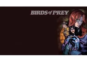 漫画壁纸,鸟,关于,捕食,女猎手,壁纸(1)