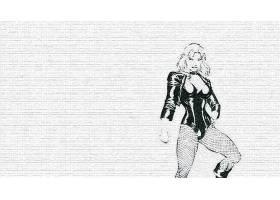 漫画壁纸,黑色,金丝雀,壁纸(1)