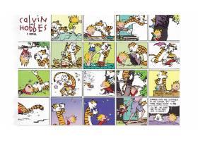 漫画壁纸,加尔文,霍布斯,霍布斯,加尔文,壁纸(11)
