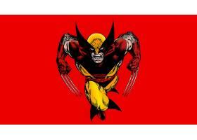 漫画壁纸,金刚狼,x战警,漫画壁纸,超级英雄,壁纸(16)