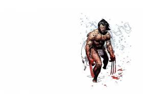 漫画壁纸,金刚狼,x战警,漫画壁纸,超级英雄,壁纸(6)