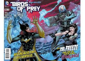 漫画壁纸,鸟,关于,捕食,蝙蝠女侠,黑色,金丝雀,先生,冻结,哥伦比