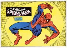漫画壁纸,这,令人惊异的,蜘蛛侠,蜘蛛侠,壁纸(7)