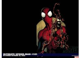 漫画壁纸,终极,蜘蛛侠,蜘蛛侠,大屠杀,壁纸