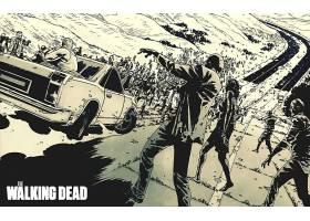 漫画壁纸,这,步行,死亡的,壁纸(7)
