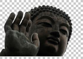 天坛佛宝林寺佛像佛像,拉大佛头PNG剪贴画免费Logo设计模板,摄影,