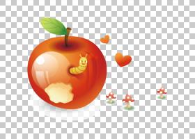苹果,苹果PNG剪贴画食品,橙色,电脑壁纸,绿苹果,封装的PostScript