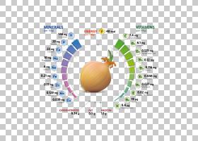 营养素青葱维生素矿物质,洋葱分析图表PNG剪贴画食品,文本,生日快