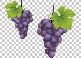 葡萄叶巨峰果,葡萄,紫葡萄,水果PNG剪贴画食物,叶子,葡萄,葡萄家