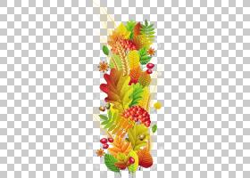 秋季季节叶摄影,小麦和叶子PNG剪贴画水彩叶子,花卉安排,英语,冬图片