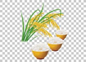 籼米月饼食品谷物,米饭和米饭PNG剪贴画水稻,稻田,大米袋,果汁,大